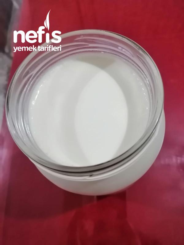 Ev Yoğurdu (En Sağlıklısı)