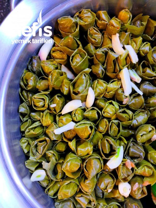 Zeytinylı Salamura Yaprak Sarması