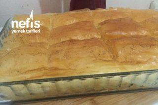 Laz Böreği (Harika Bir Tatlı Mutlaka Deneyin) Tarifi