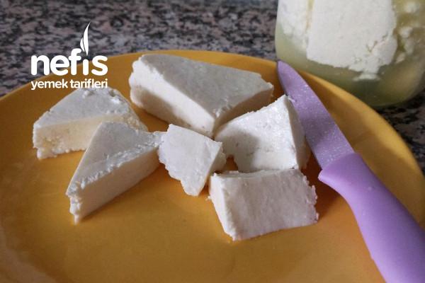 Elma Sirkesi İle Peynir Mayalama