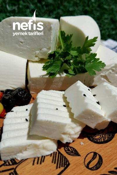 Ev Yapımı Klasik Beyaz Peynir