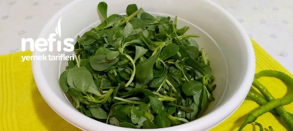 Semizotlu Bahçe Salatası