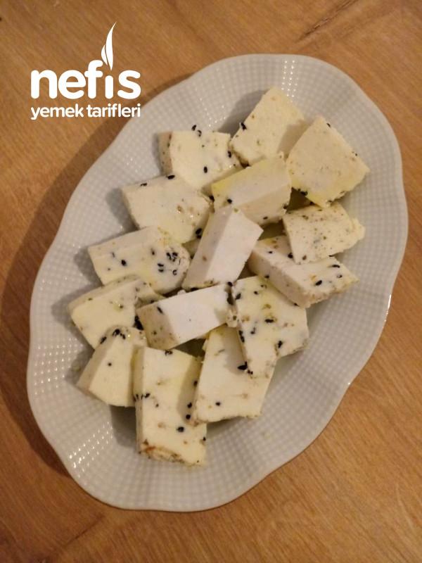 Kesilen Sütten Kekikli Peynir Yapımı-9415713-130531