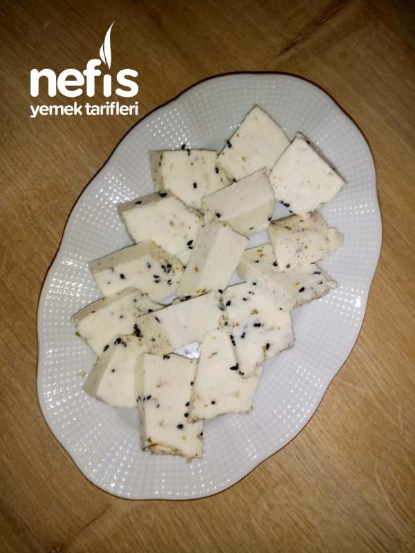 Kesilen Sütten Kekikli Peynir Yapımı-9415713-130533