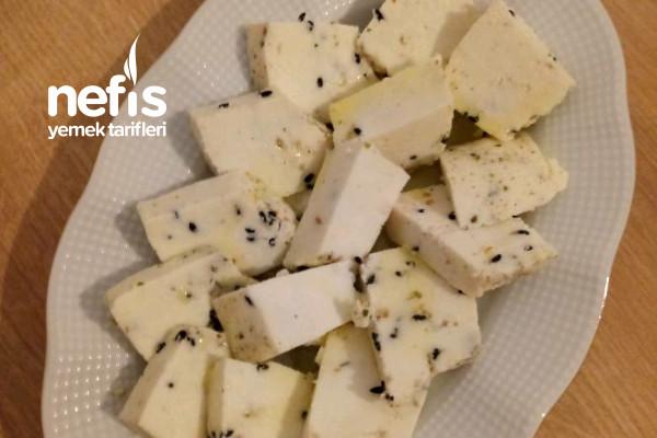 Kesilen Sütten Kekikli Peynir Yapımı