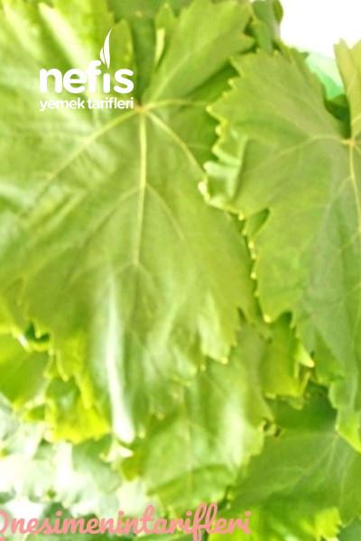 Ekşili Taze Yaprak Sarması-9411630-170528