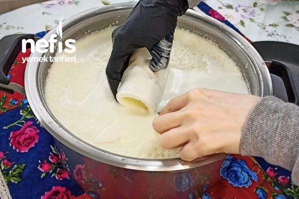 6 Litre Sütten Yarım Kilo Süt Kaymağı Videolu