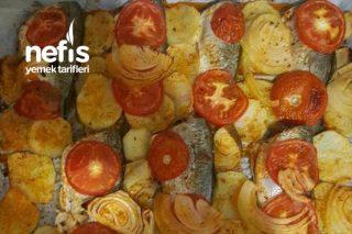 Fırında Sebzeli Çinekop Tarifi