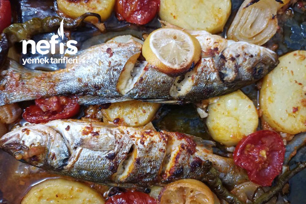 Fırında Balık