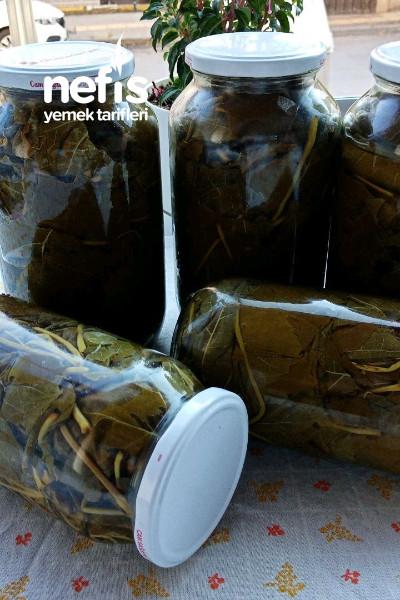 Kış Hazırlıkları İçin Yaprak Konserve Si-9472469-160643