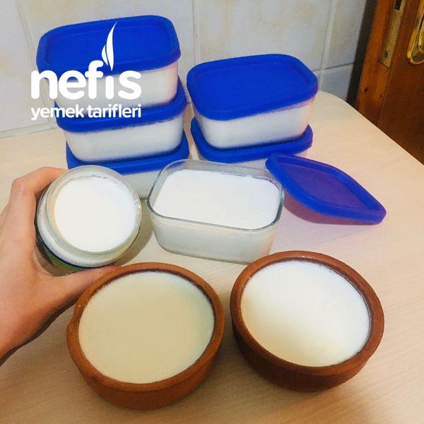 Probiyotik Yoğurt Mayası İle Yoğurt Yapımı-9504642-050613