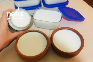 Probiyotik Yoğurt Mayası İle Yoğurt Yapımı Tarifi