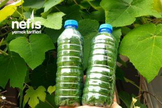 Tuz Ve Su Kullanmadan Üzüm Yaprağı Saklama (Videolu) Tarifi