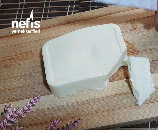 2 Su Bardağı Süt İle 400 Gr. Sürülebilir yumuşak Peynir Tarifi (Videolu)