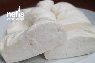 Evde Peynir Yapımı (Videolu) Tarifi