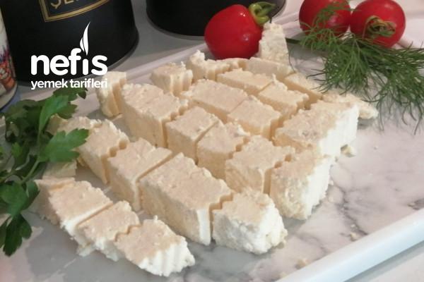 Evde Peynir Yapımı (Doğal Katkısız)