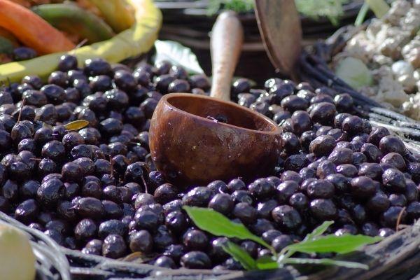 zeytin nasıl yapılır