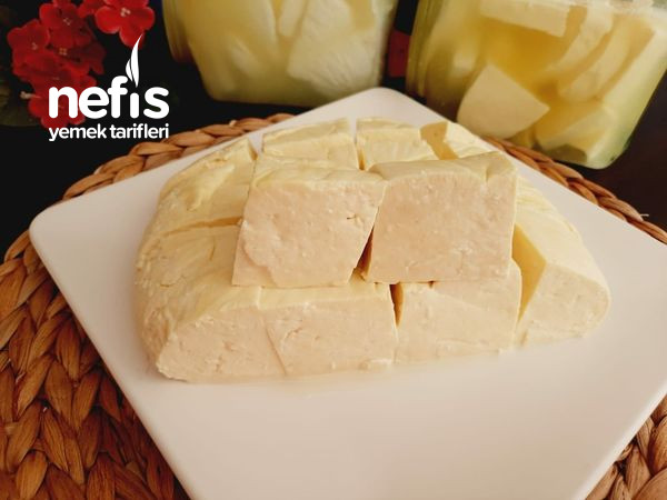 Evde Salamura Peynir Nasıl Yapılır? (Videolu)