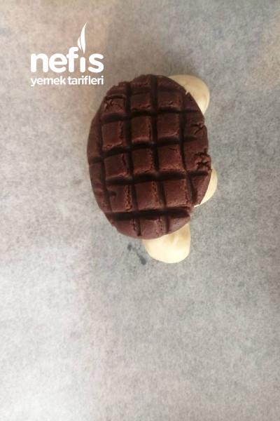 Kaplumbağa Kurabiye-9561305-070630