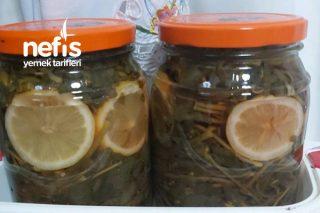 Semizotu Turşusu (Probiyotik Ve Omega 3 Deposu) Tarifi
