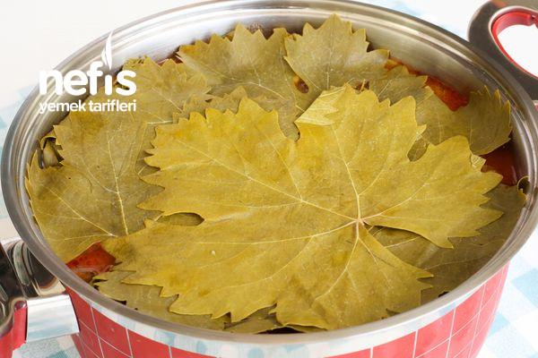 Taze Yaprak Sarması (Zeytinyağlı Salçalı)-3459133-110734
