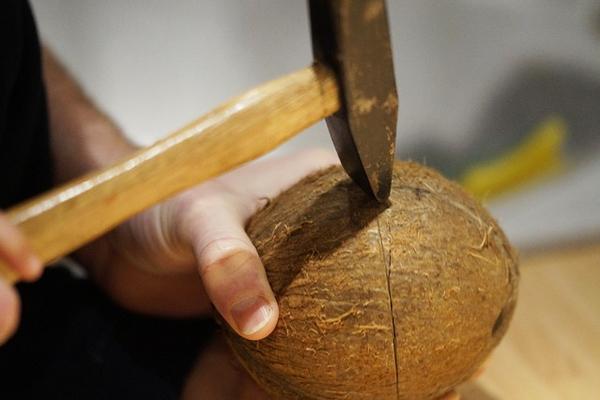 hindistan cevizi nasıl açılır