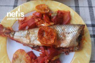 Fırında Sebzeli Lüfer Balığı Tarifi