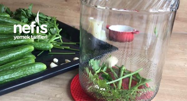 Limon Suyu İle Kütür Kütür Salatalık Turşusu (Videolu )