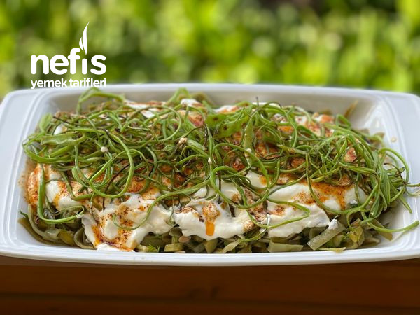 Taze Fasülye Salatası