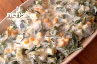 Yedikçe Yedirten Semizotu Salatası Tarifi