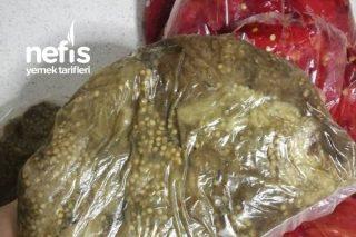 Buzluğa Közleme Patlıcan Ve Kapya Tarifi