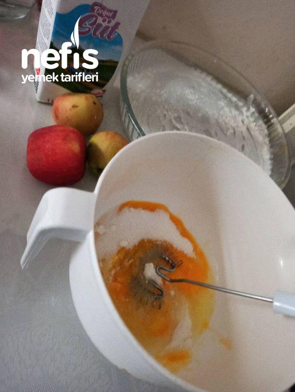 Herşeyi İçinde Elmalı Kuş Üzümlü Kek Favoriniz Olacak