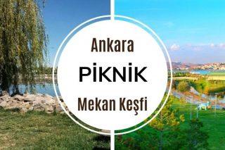 Ankara Piknik Alanları: Doğayla İç İçe 11 Güzel Yer Tarifi