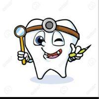 Diş Hekimi :)