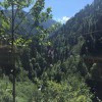 Ebru Kutlu