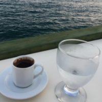 Akdeniz'li Figgy Beslenme Koçu