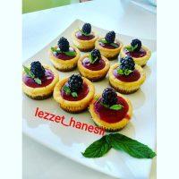 lezzet_hanesii