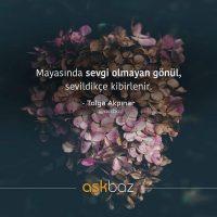 Aysun Kiper