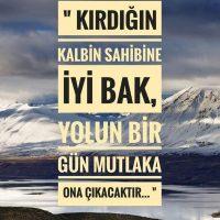 Arife Dolapcı