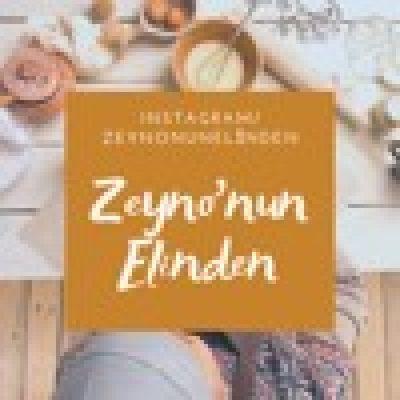 instagram/zeynonunelinden