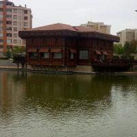 Arzu Türk