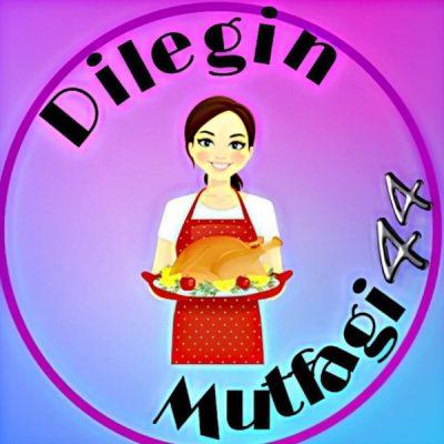 Dilegin_mutfagi44
