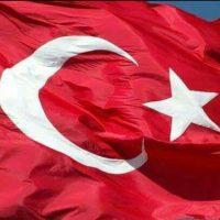 Zeynep S.