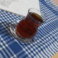 Filiz İzan