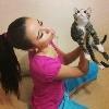 Minik Kedi